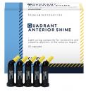 Quadrant Anterior Shine Caps